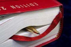 recevabilité,mémoire,régularisation,pouvoirs du juge,délai,clôture de l'instruction